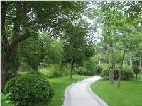 成都4条出城通道打造绿色景观 市民家门口即可赏花