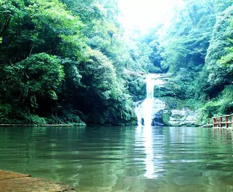 喇叭河位于雅安市天全县,很凉爽,绿树成阴,峡谷中有大大小小瀑布近