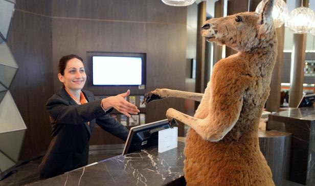 当地时间2015年5月20日报道(具体拍摄时间不详),澳大利亚悉尼,树袋熊在跑步机上跑步,红袋鼠在服务台登记,海狮在泳池旁戴墨镜看美女,悉尼铂尔曼海德公园酒店居然还敢说自己是正常并安全的酒店?别怕,其实凑近一看就知道,这些都是动物毛绒玩具而已。这组诡异的照片由摄影师James Morgan拍摄,为年度野生生物摄影师大赛做推广,在澳大利亚博物馆展出,纪念其成立50周年。
