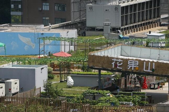 """商场楼顶现""""天空农场"""" 市民可购菜地"""