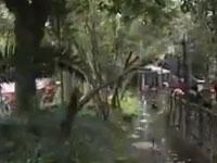 怡园生态河鲜