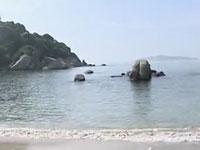 巽寮金海湾养生美食之游