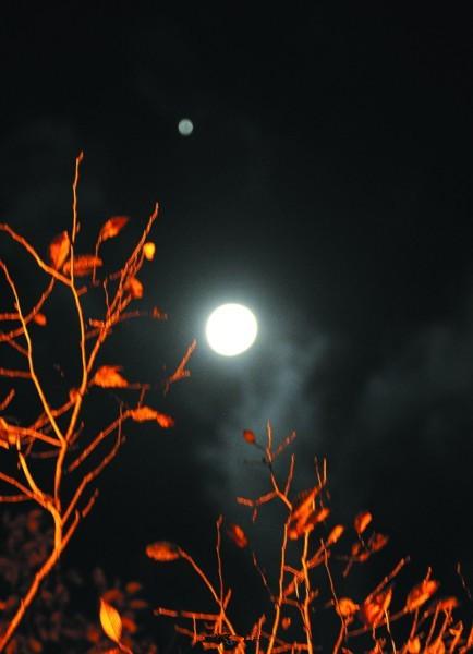 """太阳系的""""大个子""""木星将与月亮近距离接触"""