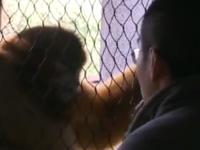【我爱成都】饲养员用心关爱动物