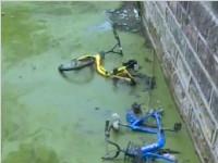 单车被扔河中 缺德!
