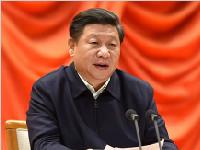 习近平:党政主要负责同志要亲力亲为抓改革扑下身子抓落实