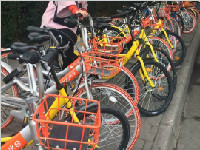 年轻人多素质高 成都共享单车最爱投放天府软件园区域