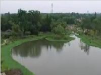 全面实行河长制管理工作 促进城市生态转型升级