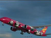 """萌萌哒""""功夫熊猫""""载客飞行 机舱里面是怎样的呢?"""