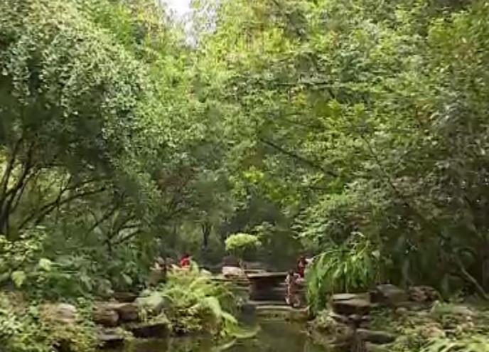 亭外晴空万里 亭内暴雨如注 首个海绵城市试验平台亮相活水公园