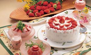 请别动我的蛋糕梦