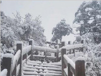 <font color=red>西岭雪山</font>一夜飘雪!来提前赏雪景