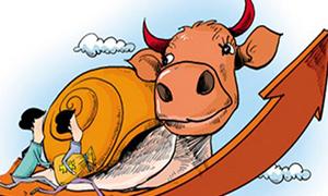 慢牛是宣传队 慢牛是播种机