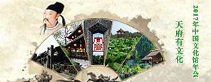 天府有文化-2017年中国文化馆年会