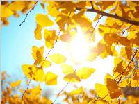 本周阳光持续灿烂 周五迎来冬至
