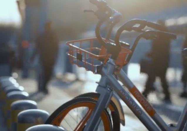 爱骑行 爱绿色 单车减排成都全球第三