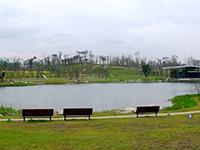 有一种生活美学叫成都:坐落在闹市区的桂溪生态公园