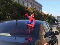 """车顶坐个""""蜘蛛侠""""很拉风?交警:这是违法的!"""
