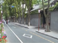 社区治理新路径:打造花园城市 营造绿意社区