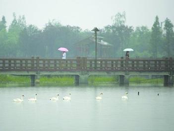 四川盆地雨一直下 端午小长假是走还是留?