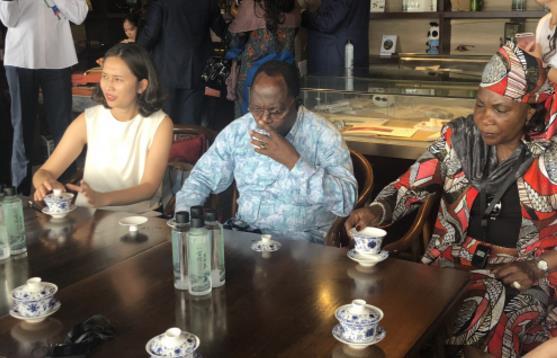 非洲多国代表团今日抵蓉 感受这样的巴蜀发展