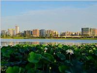 成都深圳里昂荣获全球绿色低碳领域先锋城市蓝天奖