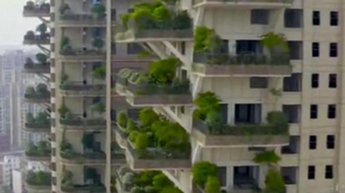 """小桥流水,枝繁叶茂 成都""""垂直森林""""小区试点初显成效"""