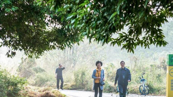 蓉平:流动的绿道才有活力