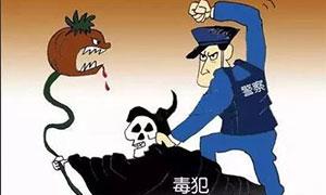 """国际""""大毒枭""""落网记"""