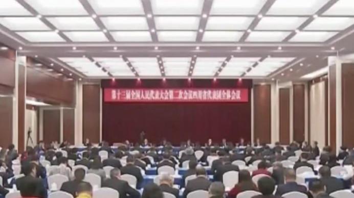 四川代表团举行全体会议 17位代表发言提了哪些建议?