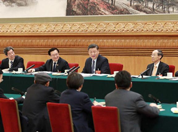五分PK10参加河南代表团审议