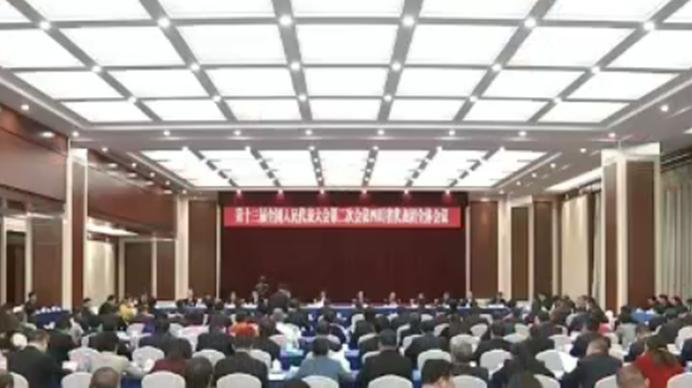 """四川代表团审议外商投资法(草案)修改稿和""""两高""""工作报告"""