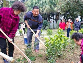 """植树也能众筹?来看市民共建""""花园社区"""""""