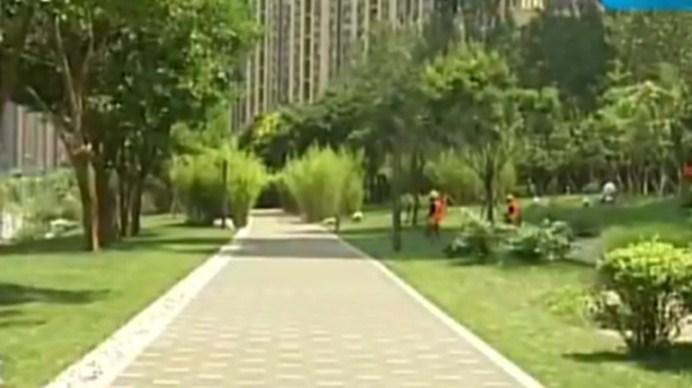 """""""千里""""绿道初建成 成都公园城市欢迎您"""
