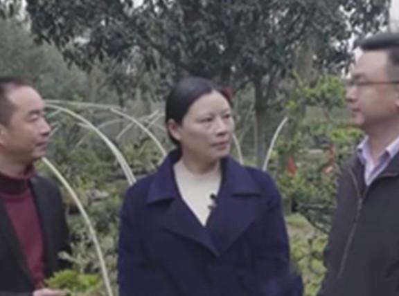 央视财经频道记录成都改革实践 看陶书记如何带领村民走上致富路