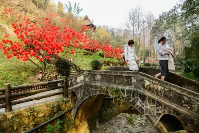 丹景山风景名胜区 图据今日头条