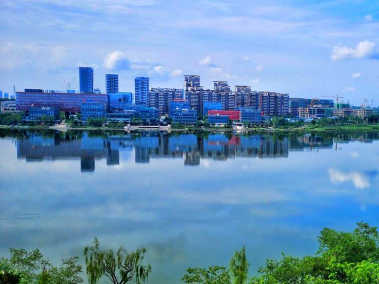 """罗强:加快东部新城规划建设步伐 高质量推动""""东进""""战略实施"""