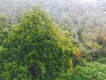 """成都""""雨神""""要来刷存在感了 记得出门带伞"""