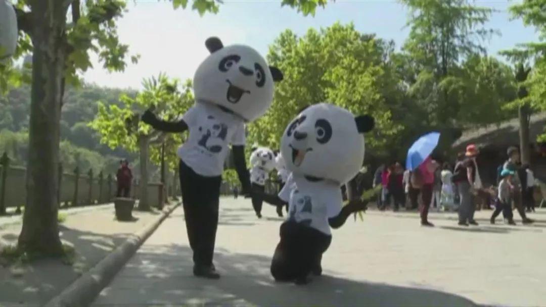 """成视女主播的公园城市VLOG丨一起来""""拜水问道""""都江堰"""
