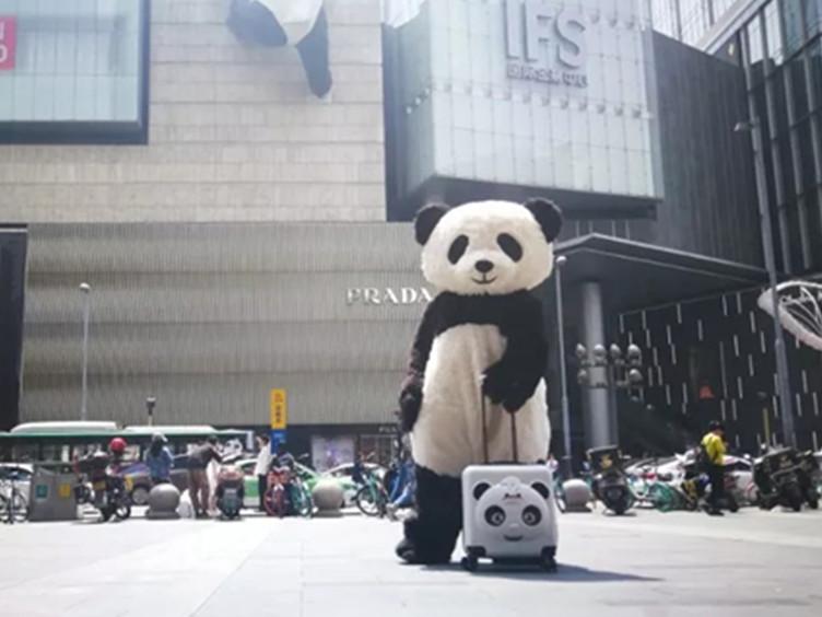 想要pick限量版熊猫登机箱?正确打开方式在这里