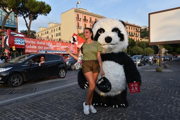 熊猫主题巴士火到意大利了 下一站,成都!