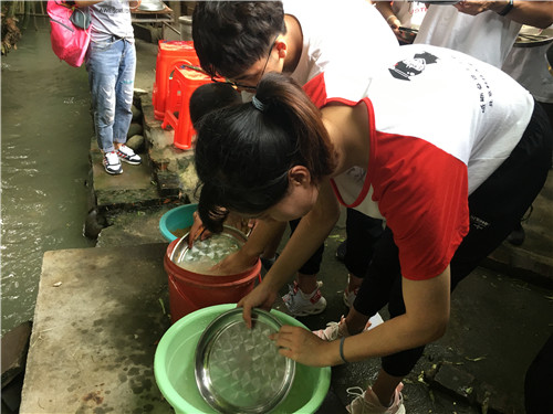 用米糠洗碗.JPG