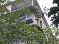 邻居家在楼顶搭建违章建筑 房屋漏雨无处修
