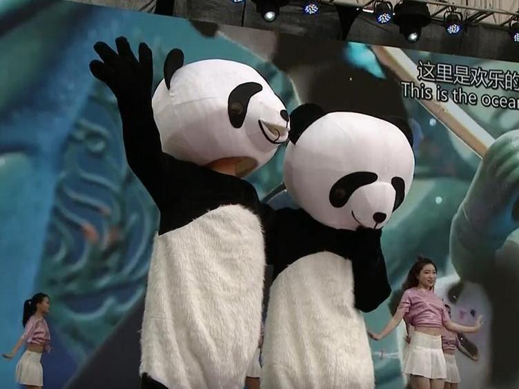 世警会闭幕式大party开始啦 《熊猫抱抱》萌化观众