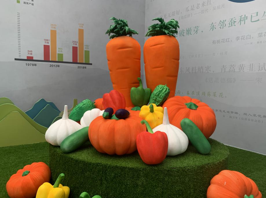 """图集丨蔬菜田园风 菜博会等你来尝""""鲜"""""""