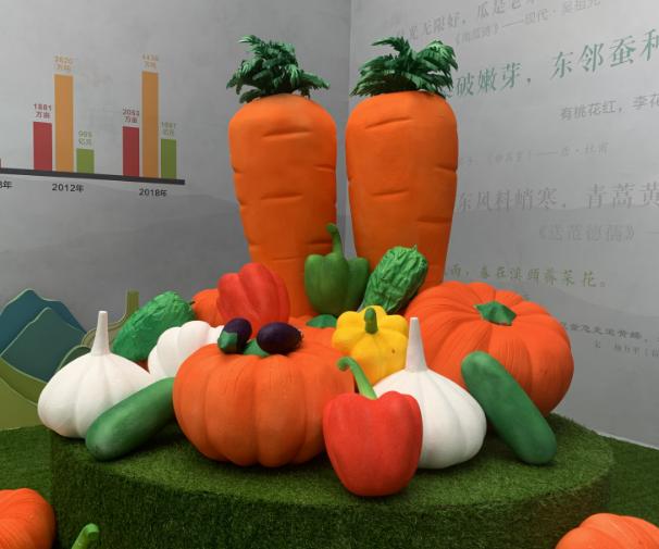 第十届了  蔬菜博览会今日开幕