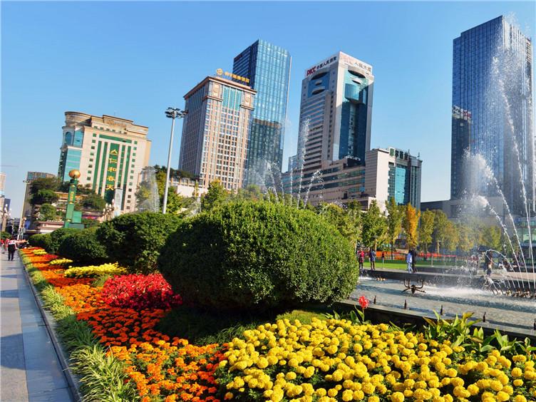 聚焦超大城市治理现代化 让高质量发展成为现代治理有力保障