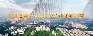 四川省委十一届六次全会特别报道
