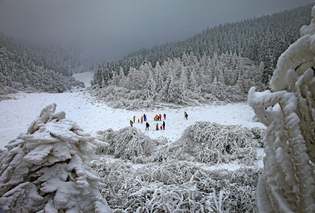 2019重庆仙女山冰雪季本周六开幕,雪地汉式集体婚礼情侣全球招募