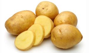 發芽變綠的土豆不能吃?